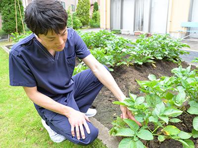グリーンビレッジ蕨の裏庭